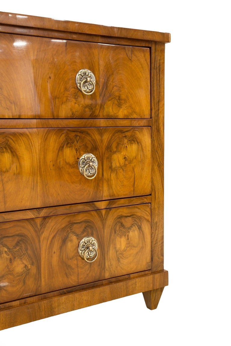 Biedermeier Chest of Drawers, Germany, 19th Century 1