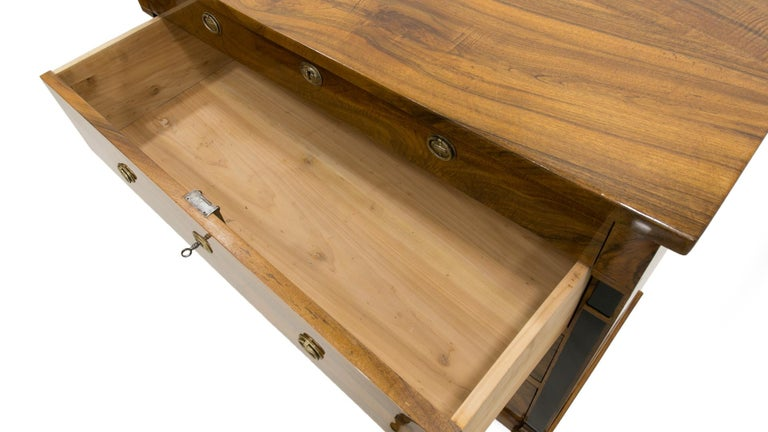 Biedermeier Chest of Drawers in Walnut Wood, France, 19th Century For Sale 2