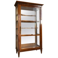 Biedermeier Era Bookcase or Collectors Vitrine from circa 1845