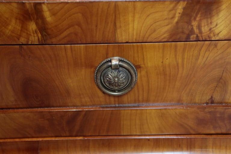 Biedermeier Period Cupboard Cabinet, Cherrywood, circa 1820 6