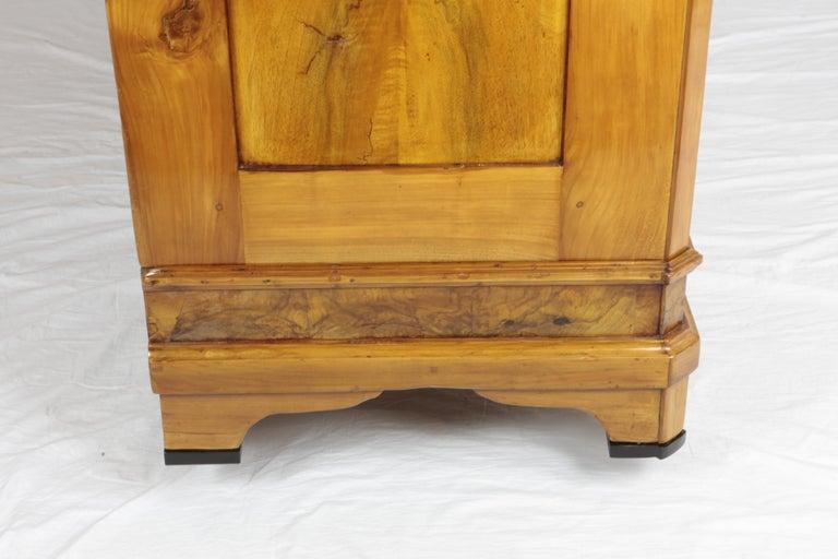 Biedermeier Period Cupboard Cabinet, Nutwood and Cherrywood, circa 1830, Brown For Sale 1