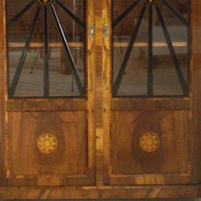 19th Century Biedermeier  Vitrine For Sale