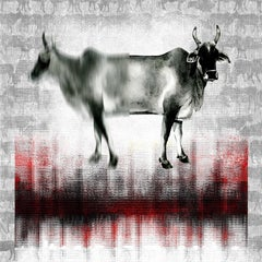 The Holy Cow - Contemporary Digital Print on Paper Black + Red + Grey + White