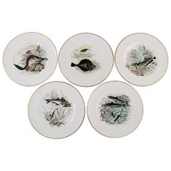 Bing & Grondahl / B&G, Five Plates in Hand Painted Porcelain with Fish Motifs