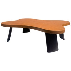 Biomorphic Cork and Mahogany Coffee Table