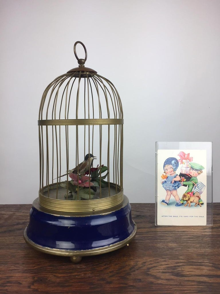 Birdcage, bird cage with a singing bird inside.