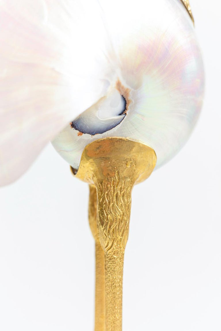 """""""Bird"""" Sculpture in Natural Shell and Gilt Brass, 1970s For Sale 6"""