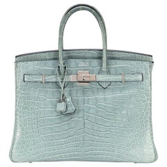 Birkin 35 Ciel Alligator [N] 2010