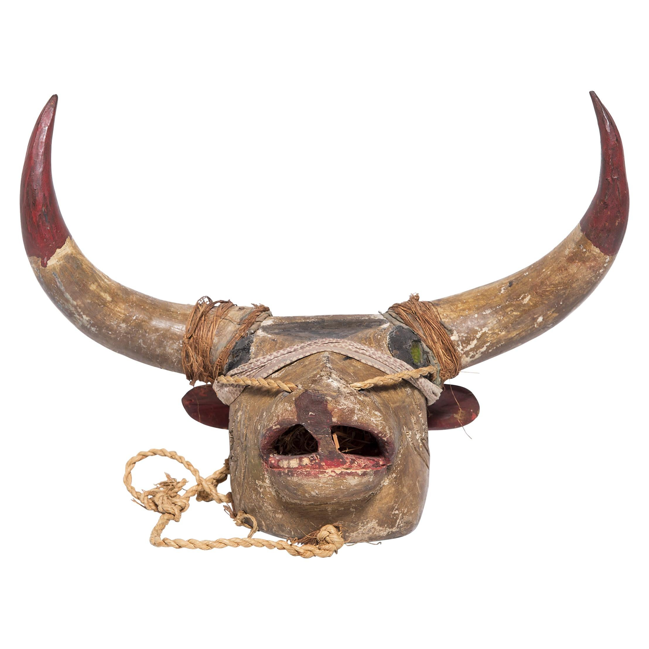 Bissau-Ginean Ox Initiation Mask