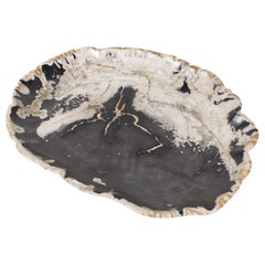 Black and Beige Petrified Wooden Platter, Organic, Home Accessory