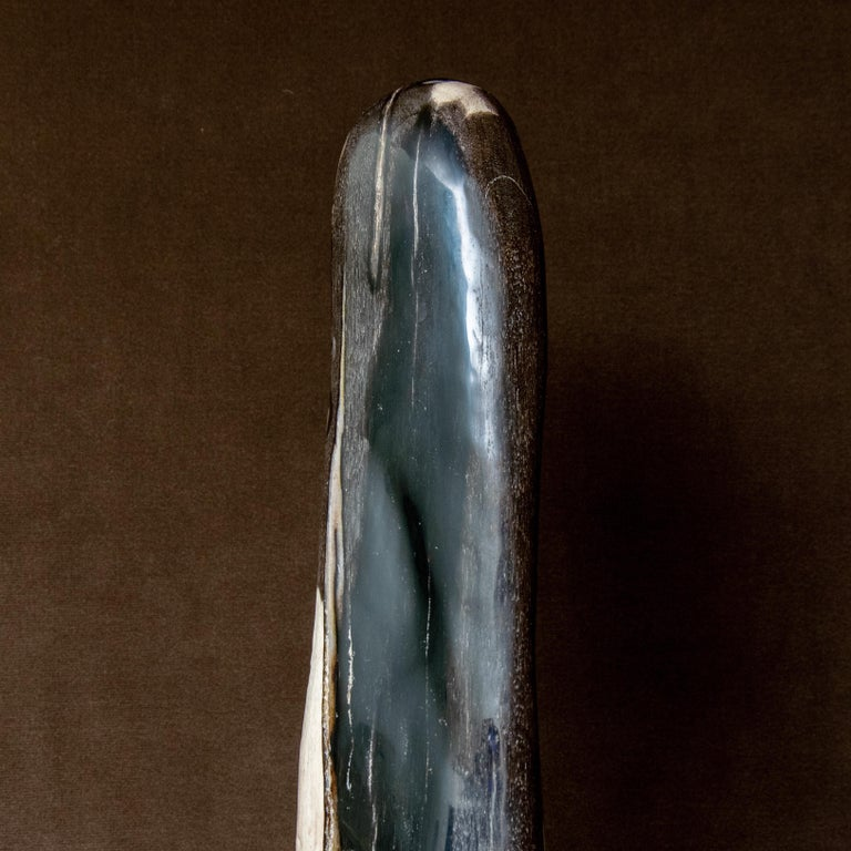 Indonesian Black and Brown Petrified Wood Sculpture Indonesia Cenozoic Era For Sale