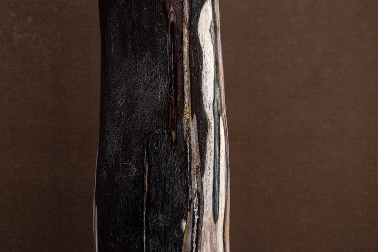 Other Black and Brown Petrified Wood Sculpture Indonesia Cenozoic Era For Sale