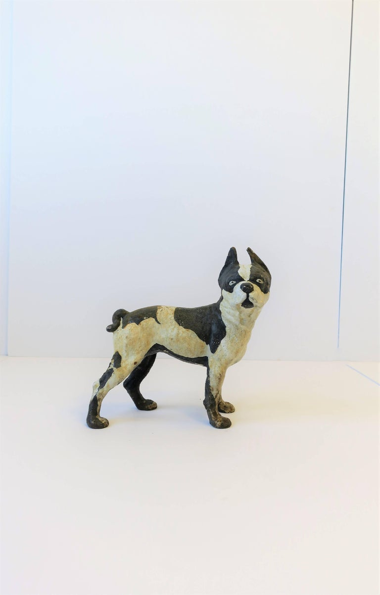 A substantial vintage black and white cast iron Boston Terrier dog sculpture or doorstop, circa 1930s. 