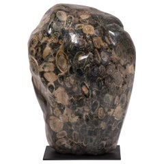 Black and White Fossil Stone Sculpture