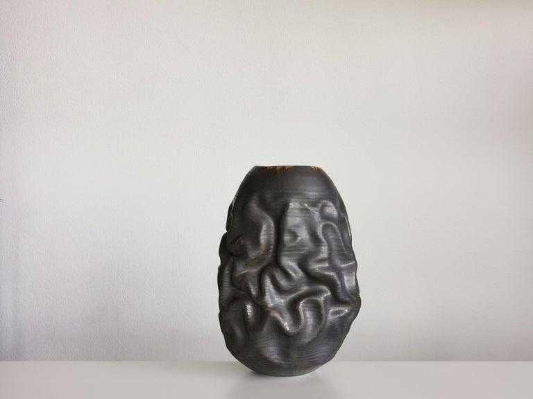 Contemporary Black Dehydrated Form, Vase, Interior Sculpture or Vessel, Objet D'Art For Sale