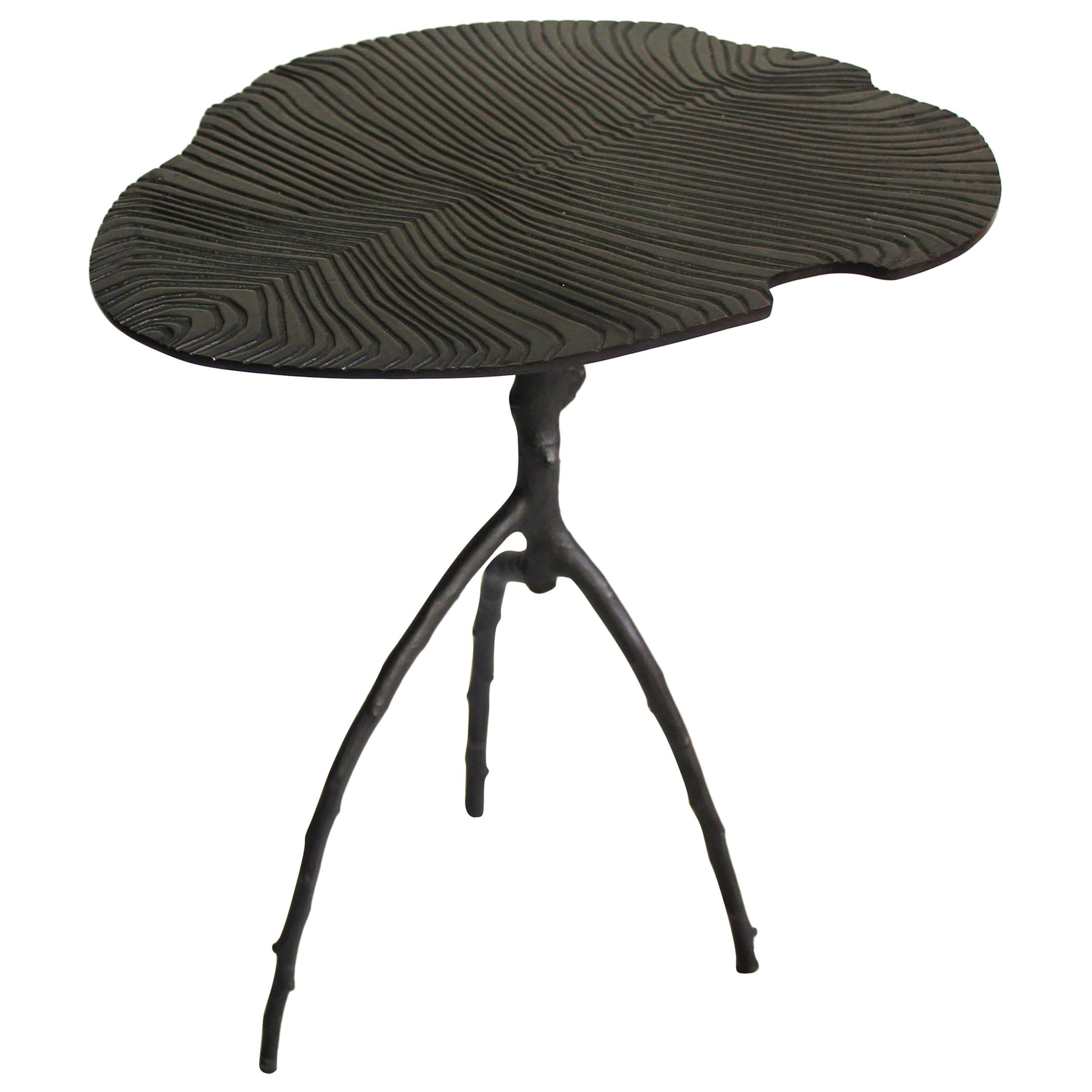 Black Dickinsonia Low Table in Bronze in Stock Design Eric Gizard