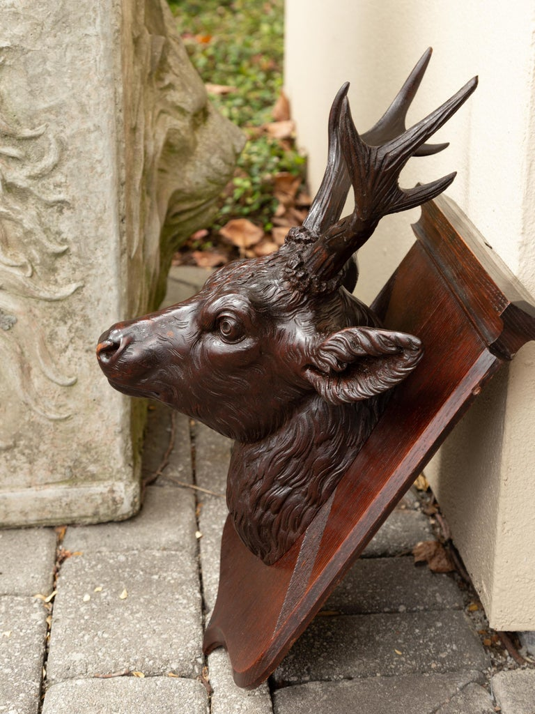 Hand-Carved Black Forest 1900s Hand Carved Wooden Buck Head Mounted on Shield Plate For Sale