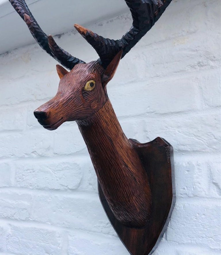 Hardwood Black Forest Carved Deer or Stag Head and Antlers on Plaque, Germany, 1900
