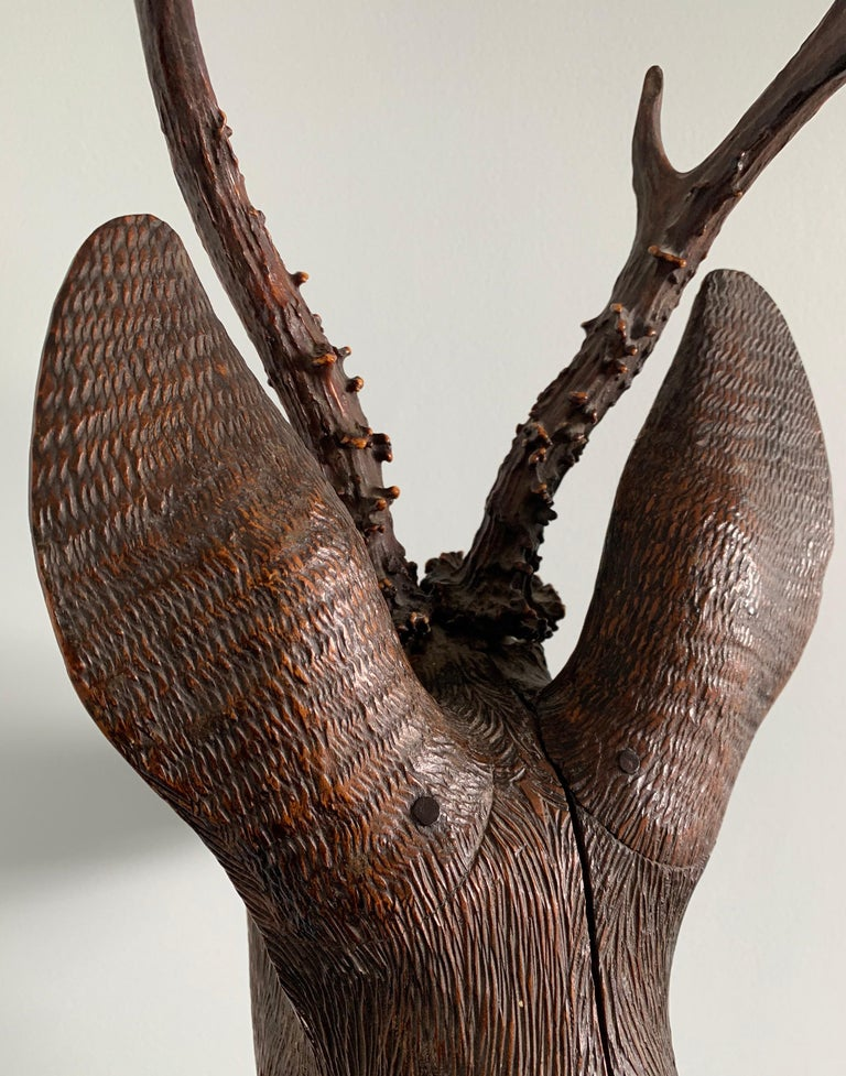 Black Forest Carved Wood Deer Head with Real Antlers, circa 1900 For Sale 5