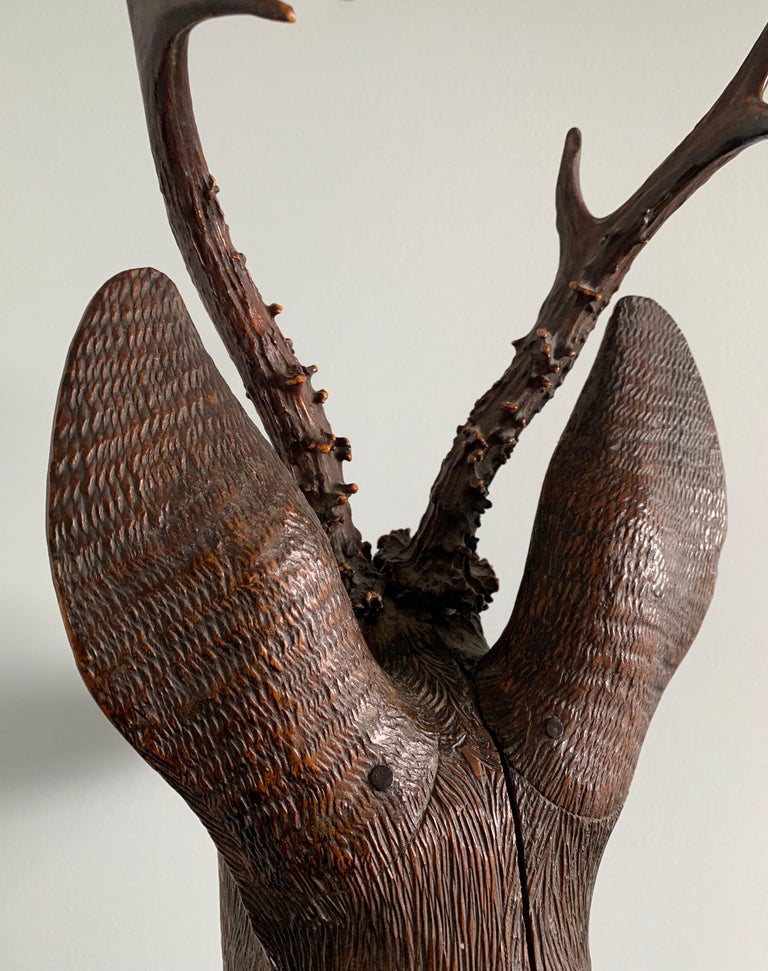 Black Forest Carved Wood Deer Head with Real Antlers, circa 1900 For Sale 6