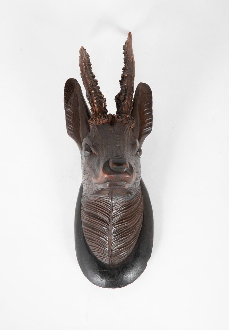A charming and beautifully carved small scale German Black Forest stags head with real antlers.  Measures: 11 inches high 4 wide 5 deep.