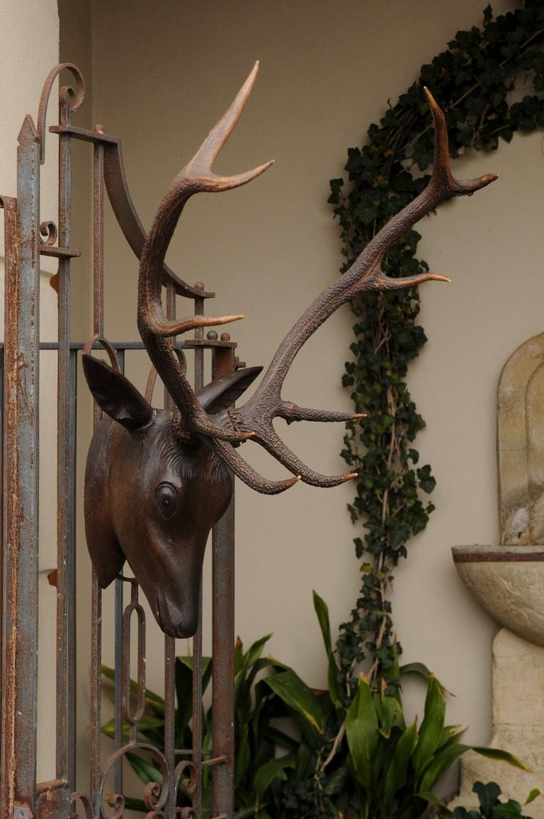 Black Forest Hand Carved Wood Stag Head, circa 1920 with Authentic Antlers For Sale 2