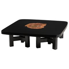 Black Lacquered Resin Coffee Table with Fossilised Wood by Ado Chale, circa 1980