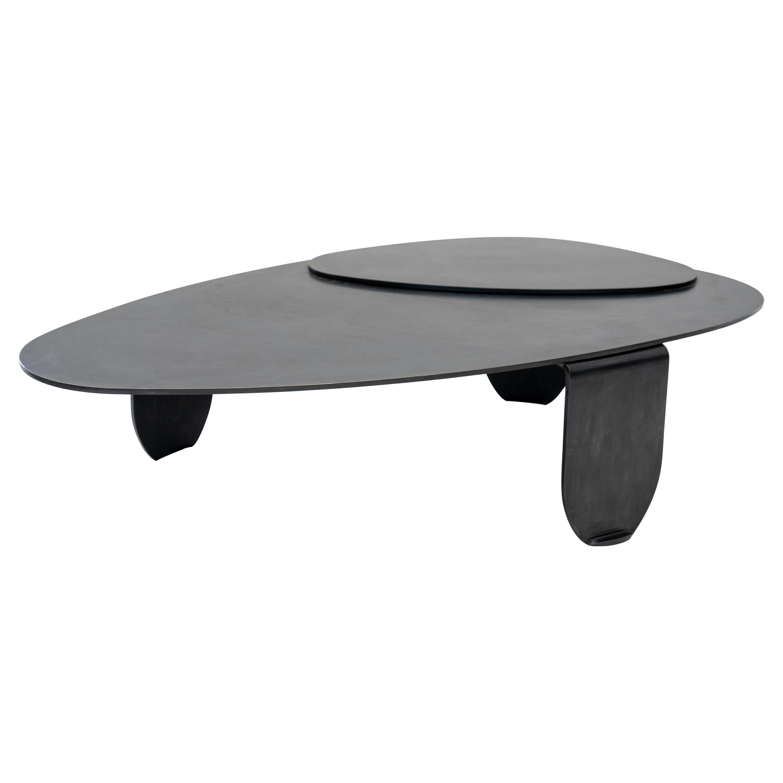 Circular/Organic Shape Coffee Table Black Modern/Contemporary Blackened Steel