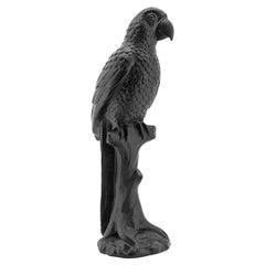 Black Parrot Sculpture