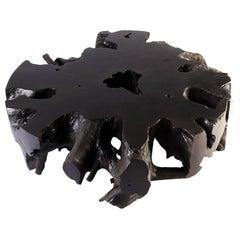 Black Round Teak Root Coffee Table