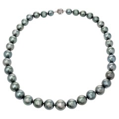 Black South Sea Pearl White Gold Necklace