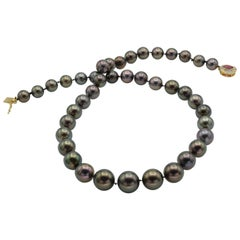 Black Tahiti Pearl Necklace with Ruby and Diamond Clasp