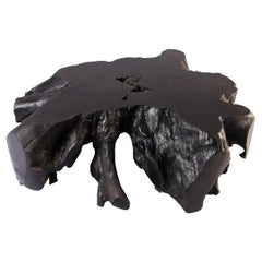 Black Teak Root Coffee Table 7