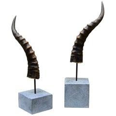 Pair of Blesbok Horn Sculpture Artist Mounted on Soapstone Bases