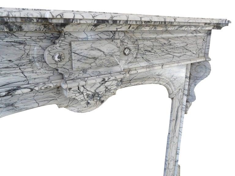 Napoleon III Bleu Fleuri Marble Fireplace For Sale