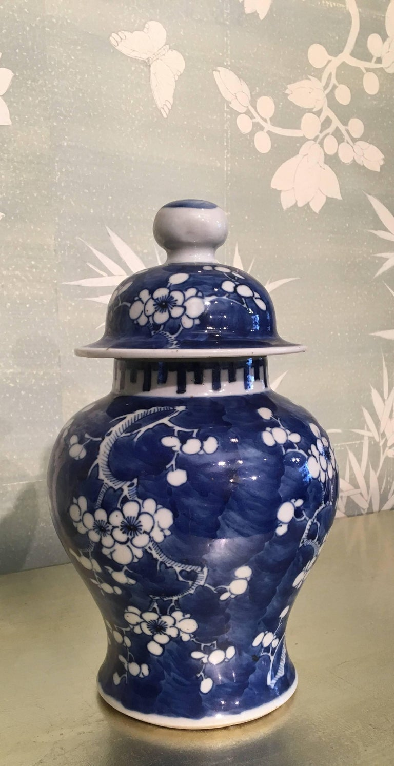 Chinese Blue and White Lidded Jar For Sale