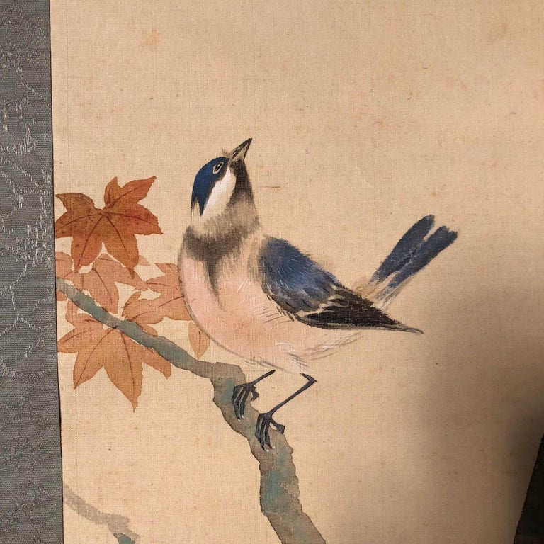 A very fine and delicate Japanese antique hand-painted silk scroll of blue birds and maple branches, Taisho period. Hand painting in lively colors with great details, signed.  Inscription: birds ??? Haku Bone rollers, beautiful silk