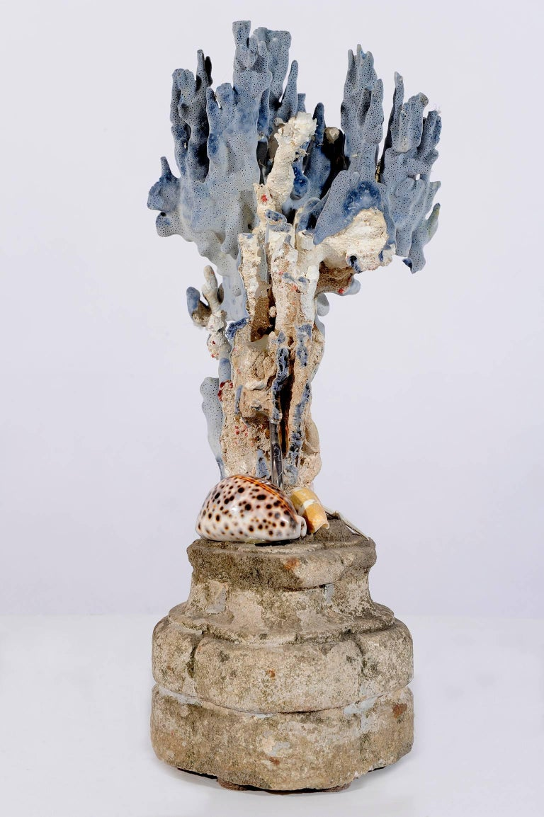 Hand-Carved  Blue Coral Madrepora Natural Sculpture on a Stone Capitel For Sale