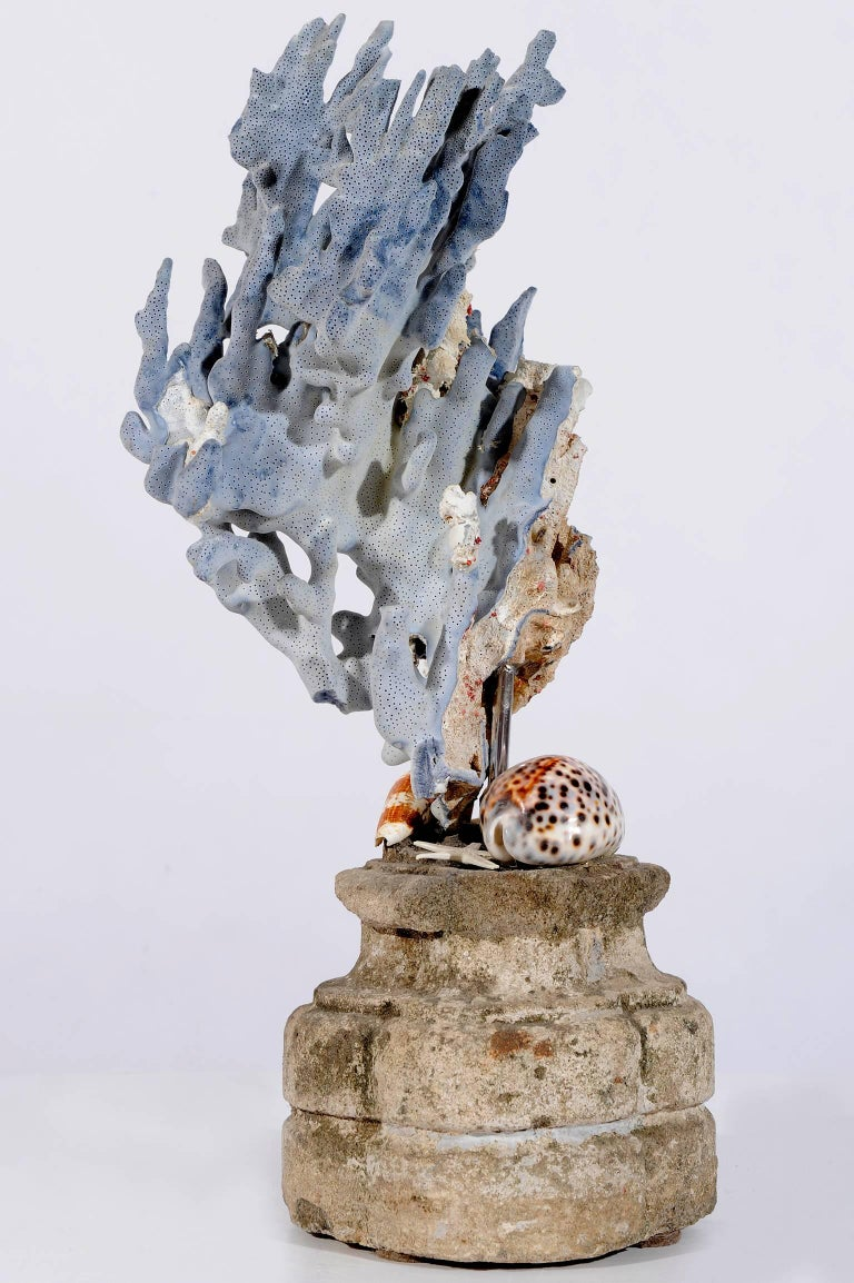 Blue Coral Madrepora Natural Sculpture on a Stone Capitel In Good Condition For Sale In Alessandria, Piemonte
