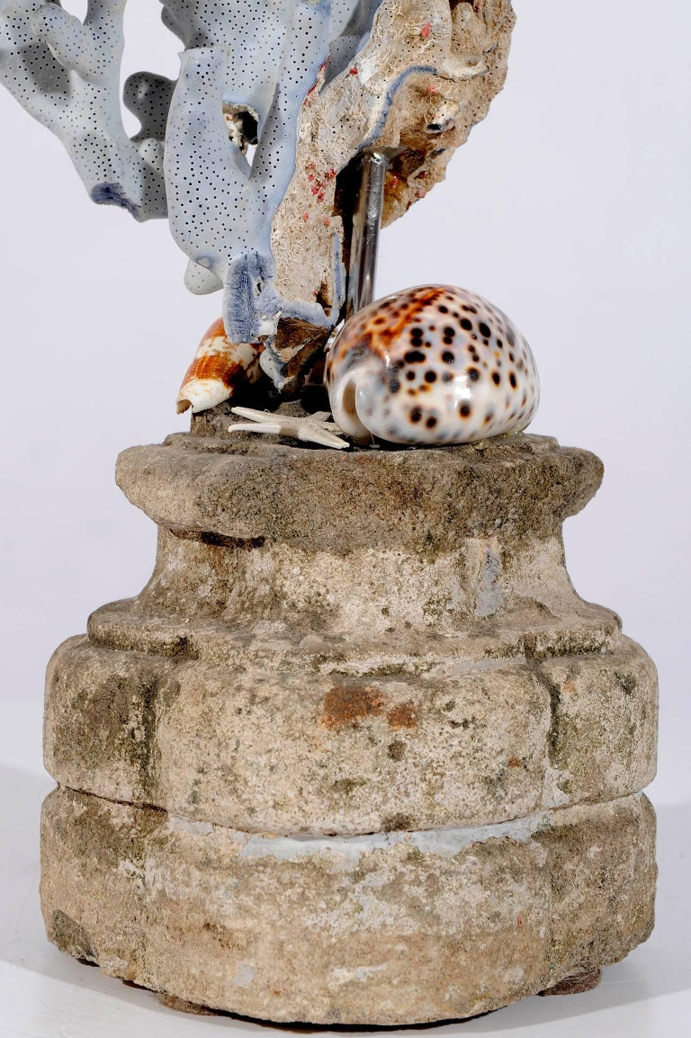 Contemporary  Blue Coral Madrepora Natural Sculpture on a Stone Capitel For Sale