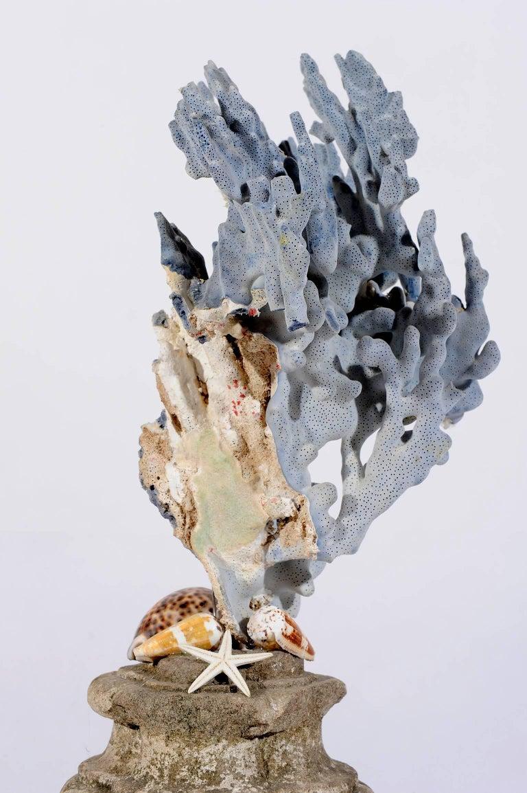 Blue Coral Madrepora Natural Sculpture on a Stone Capitel For Sale 1