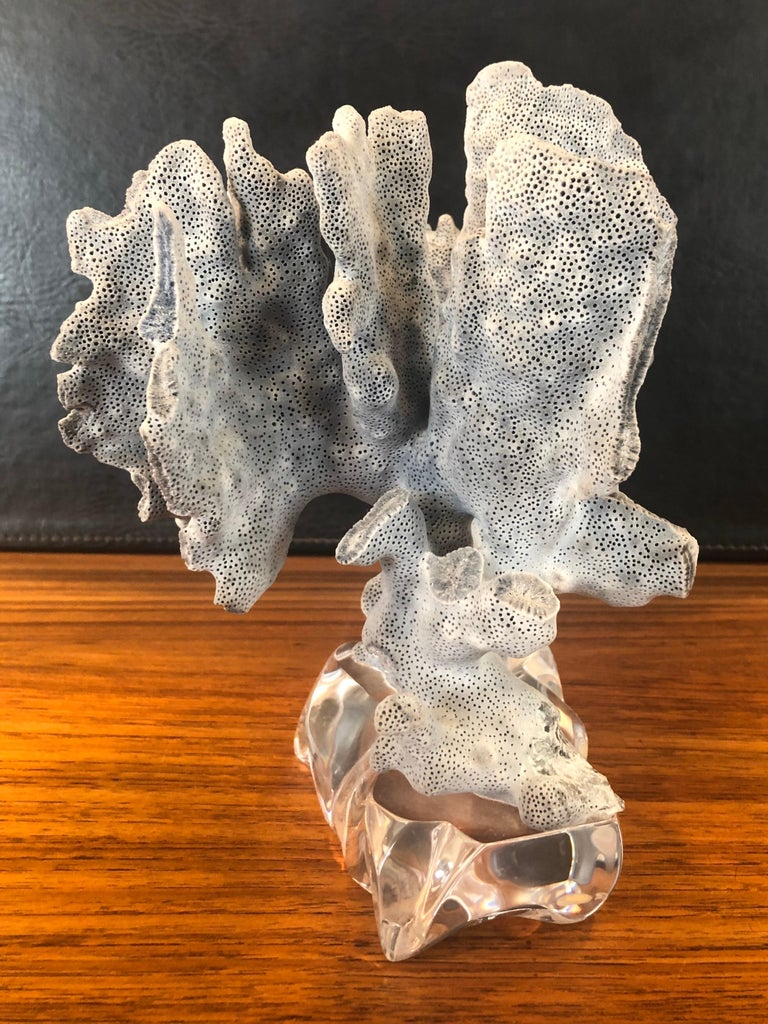 Blue Coral Organic Sculptural Specimen on Lucite Base In Good Condition For Sale In San Diego, CA