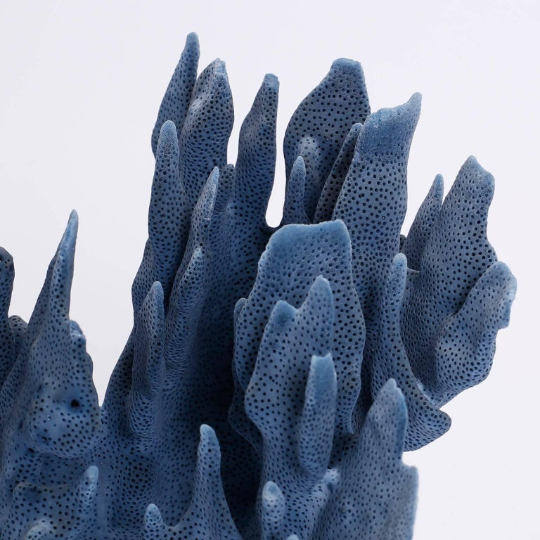 Organic Modern Blue Coral Sculptures on Lucite, Priced Individually For Sale
