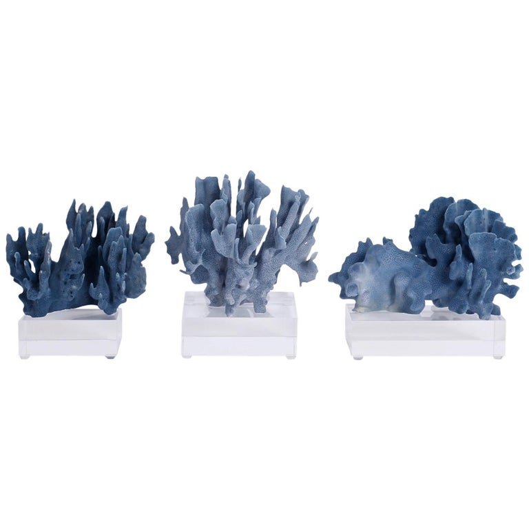 Blue Coral Sculptures on Lucite, Priced Individually For Sale