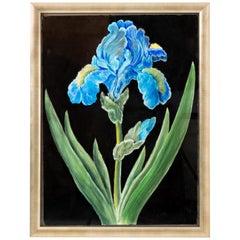 Blue Iris Pastel