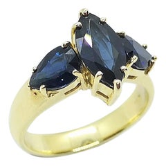 Blue Sapphire with Blue Sapphire Ring Set in 18 Karat Gold Settings