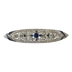 Blue Sapphire with Diamond Brooch Set in 18 Karat White Gold Settings