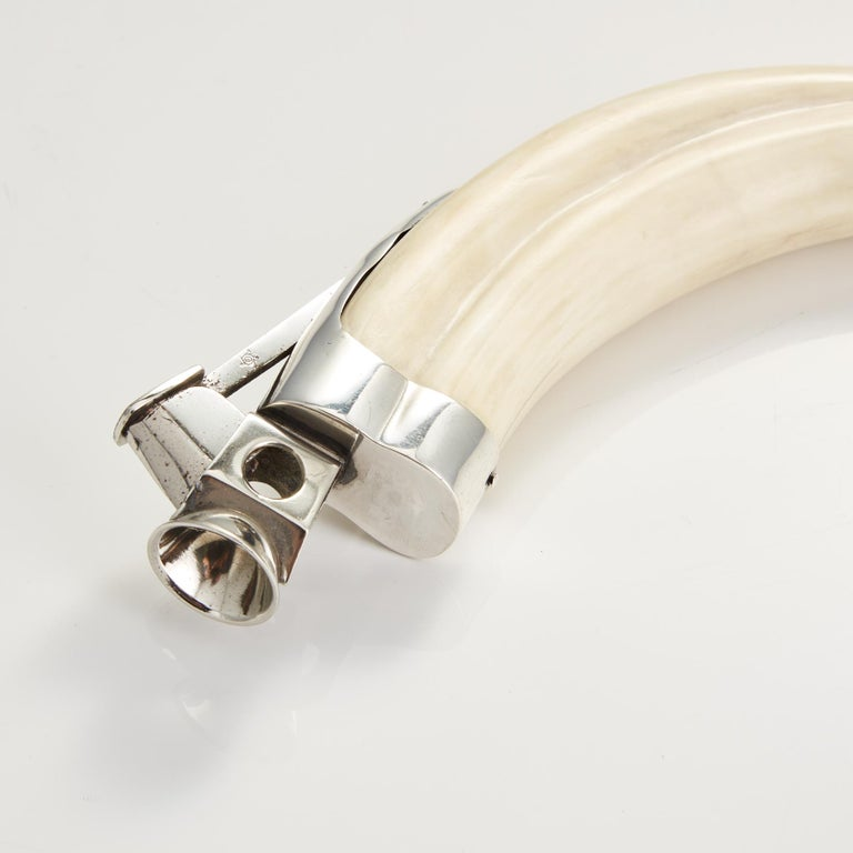 Austrian Boars Tusk Cigar Cutter Mounted in Sterling Silver Austria, circa 1910 For Sale