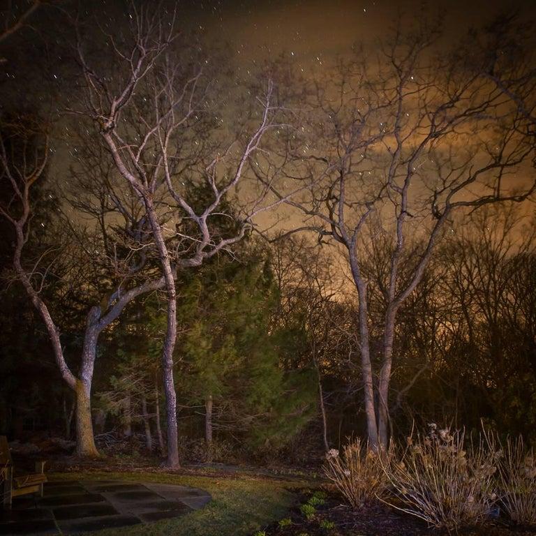 Bob Avakian Color Photograph - In My Backyard
