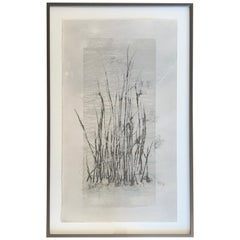 'Bog Grass' 1/4 Photolithograph Mixed-Media by Laurie Carnohan, 2019